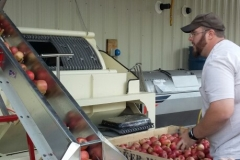 apple processing 7